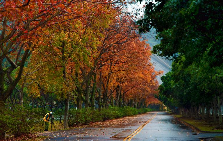 taoyuan travel